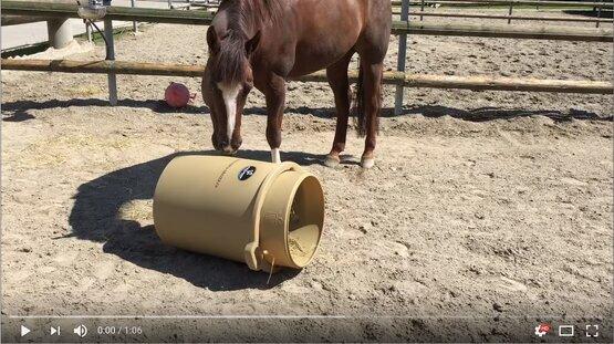Comment mange le cheval du Portagrazer